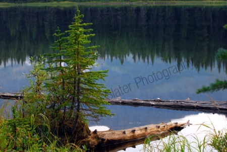 akamina-lake.jpg