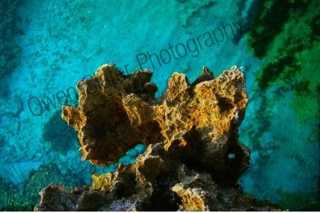 coral_coast.jpg