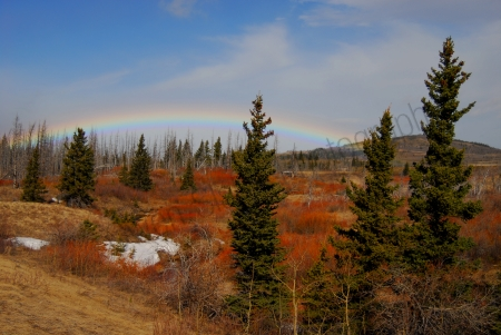 waterton-rainbow.jpg