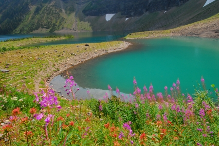 wall-lake-and-wildflowers.jpg