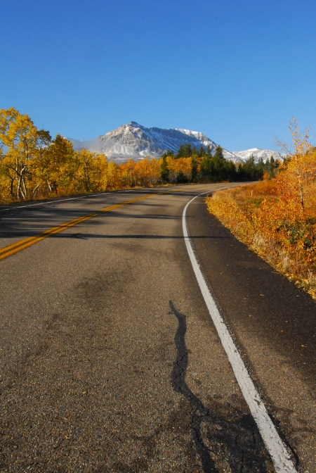 fall-leaves-mountain-and-road.jpg