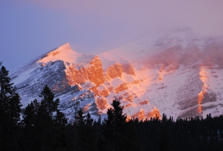 golden-mountain-light.jpg