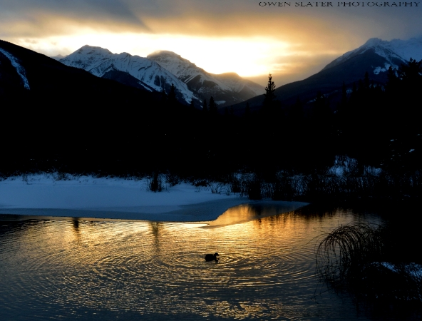 Mountains sunset duck ripples watermark