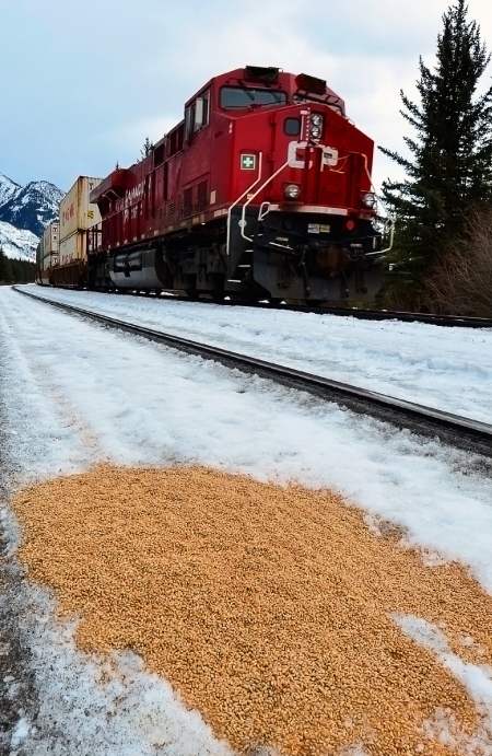 CP train and spilled grain PS SS