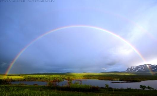 Waterton rainbow WM