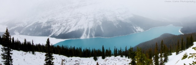 Peyto lake horizontal panorama WM