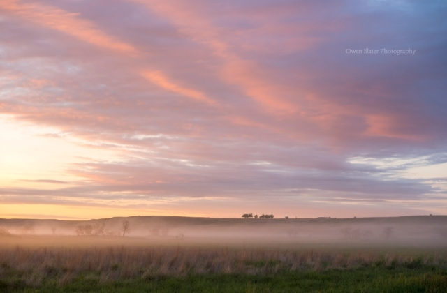 Prairie sunrise fog trees clouds WM